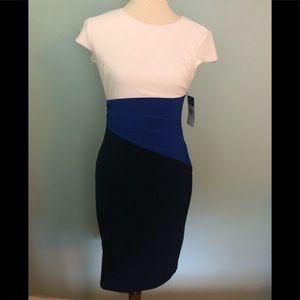 NTW Ralph Lauren dress. Size 4 petite
